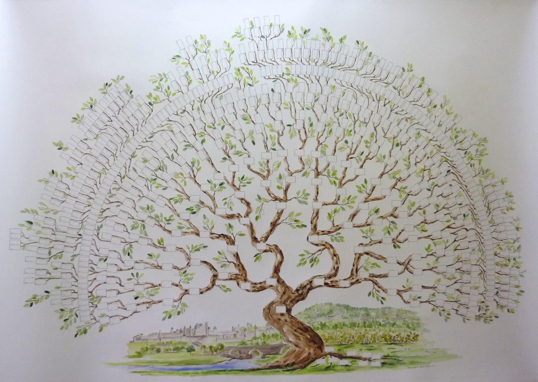 Arbre généalogique bonsaï